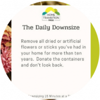 Daily-Downsize-Tips